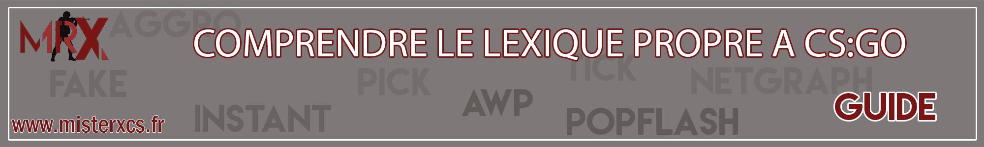 Lexique propre à CS:GO